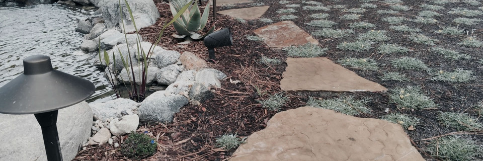 We are experts in lawn alternatives Call Us (310) 218-6804