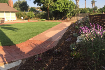 Lawn Installation and Renovation