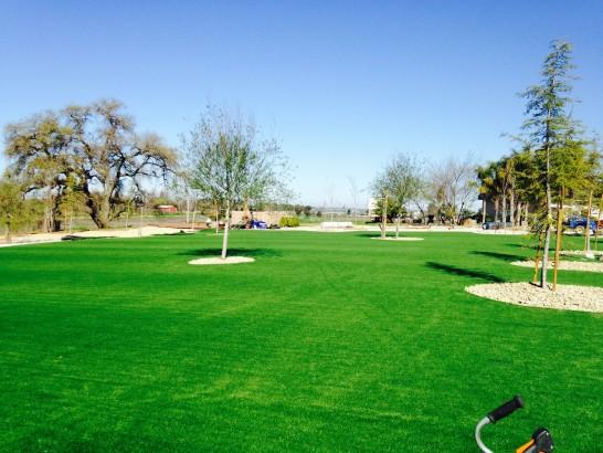 artificial-grass-installation-goleta-california-12101